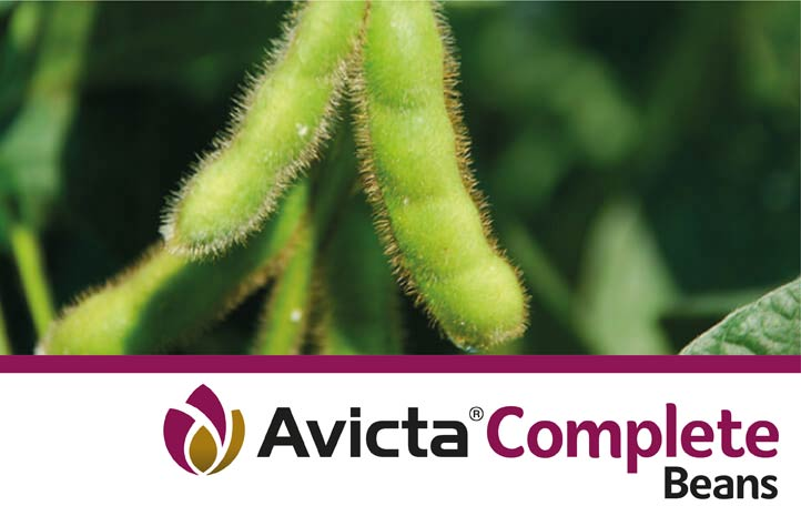 Avicta Complete Beans