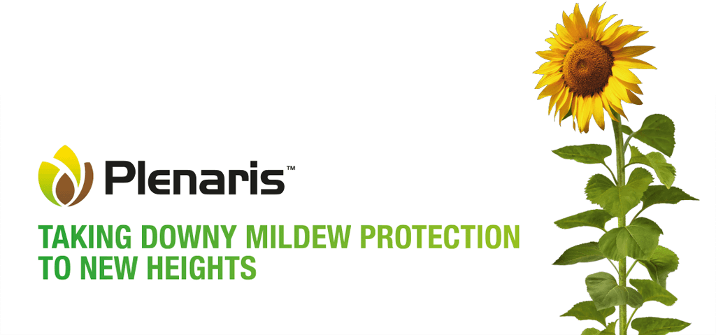 Plenaris - taking downy mildew protection to new heights
