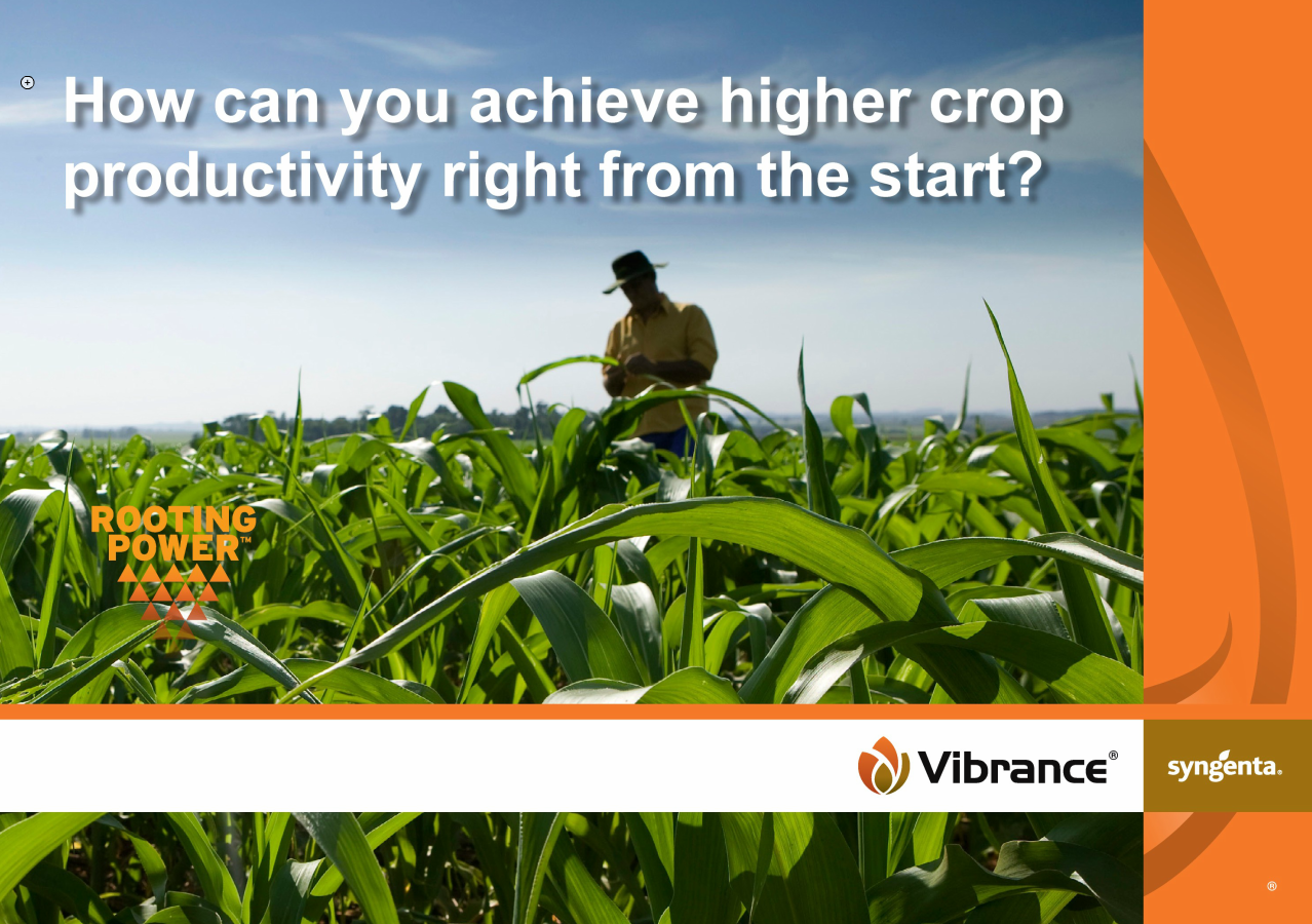 Vibrance - higher crop productivity